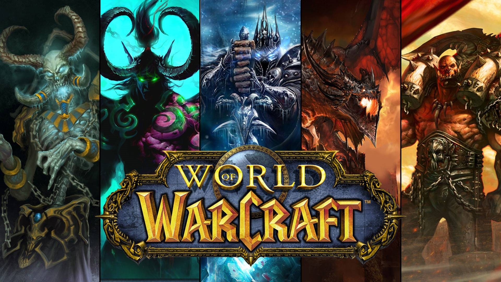 Welcome to the World of Warcraft